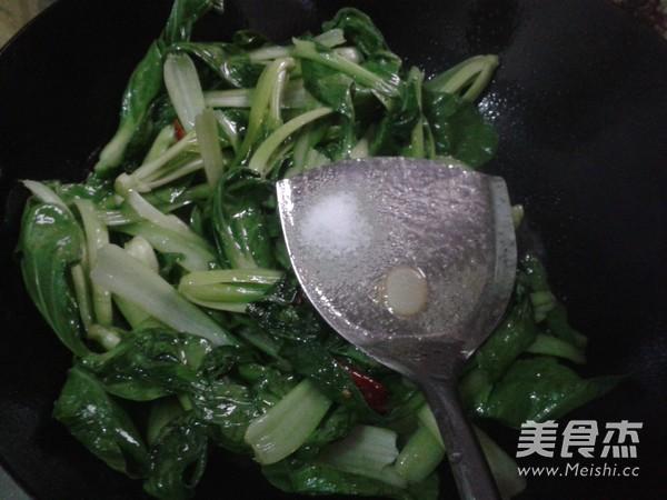 炝炒小白菜怎么做
