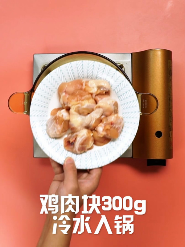 椰子鸡的做法大全
