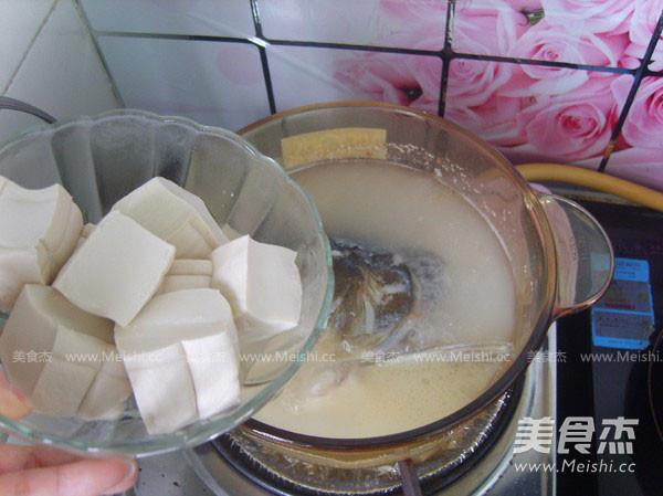 鱼头豆腐汤怎么炖