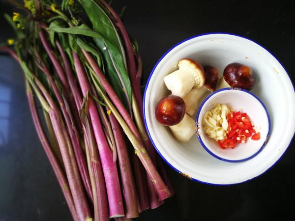 松茸炒红菜苔的做法大全