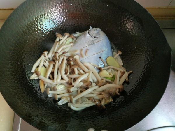 银鲳鱼炖海鲜菇的家常做法