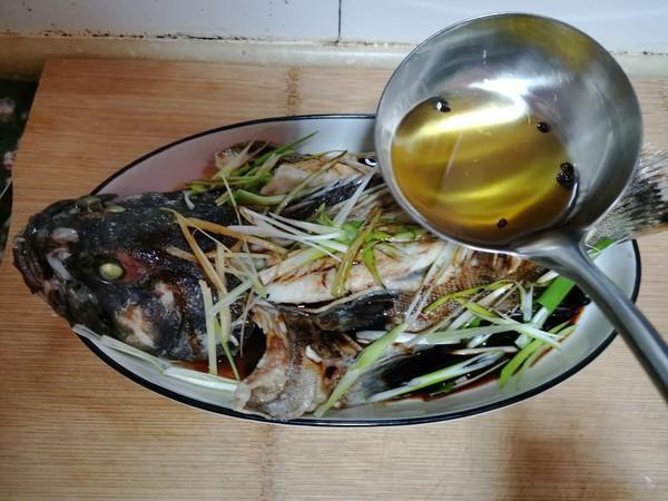 清蒸石斑鱼怎样做