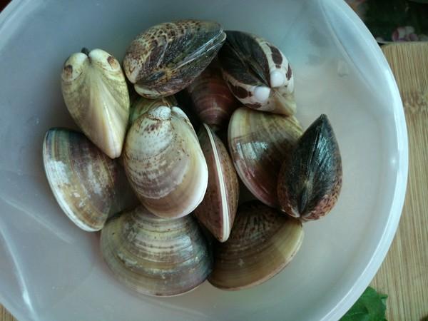 小白菜文蛤汤的做法图解