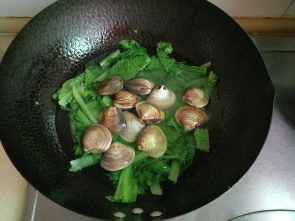 小白菜文蛤汤怎么炒