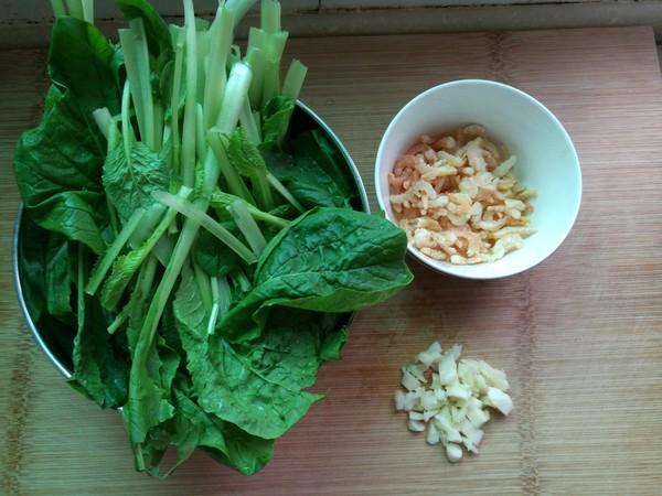 小白菜扒海米的做法大全
