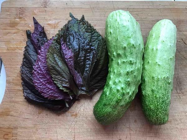 紫苏煎黄瓜的做法图解