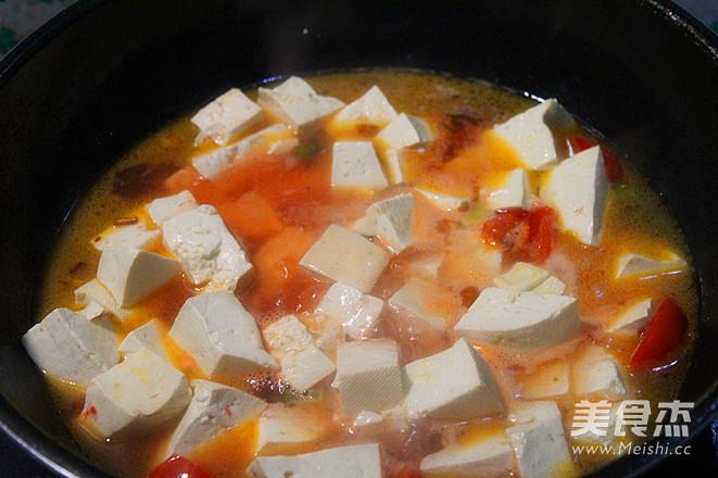 西红柿炖豆腐怎么做