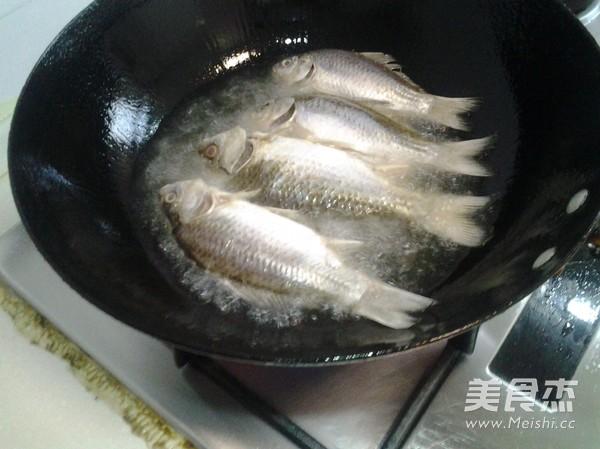 鲫鱼汤的做法大全