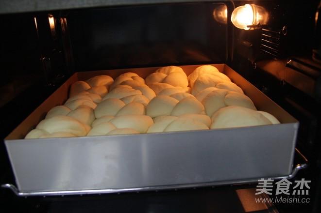 酸奶老面包怎样做