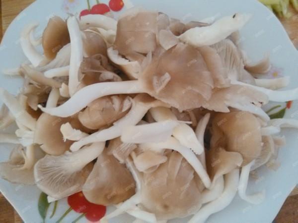 干锅平菇的做法图解
