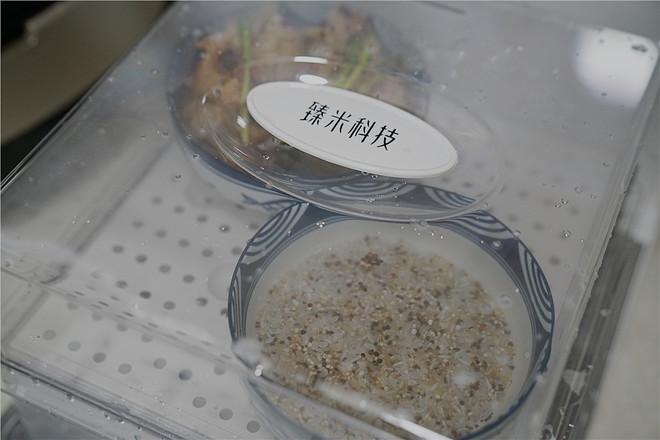 香菇菜蒸排骨的步骤