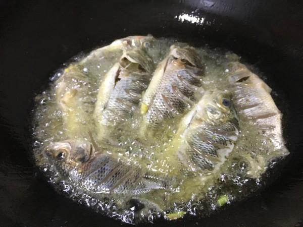 红烧罗非鱼的简单做法