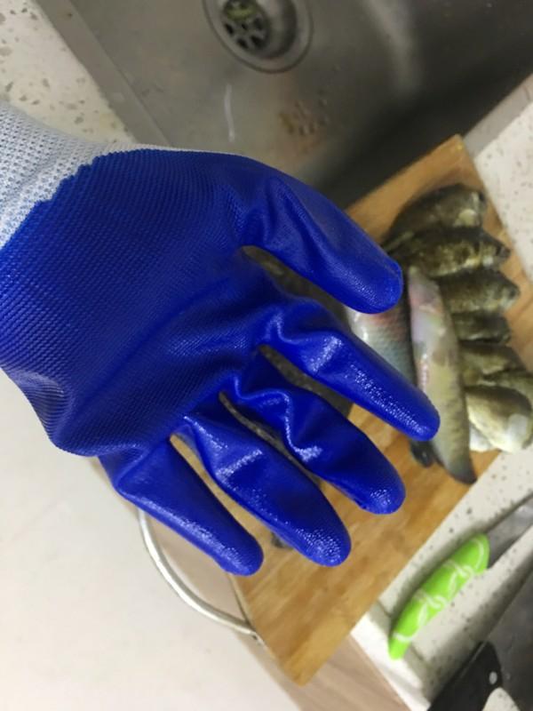 清蒸海鱼(马面鱼&哨牙妹鱼)的步骤