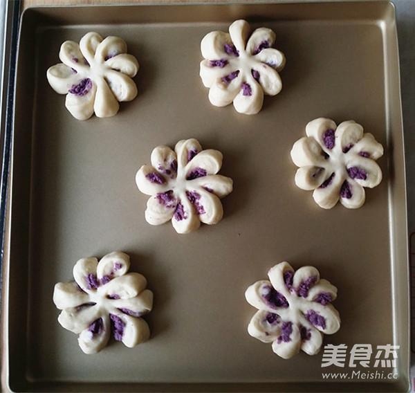 紫薯菊花小面包怎样炖