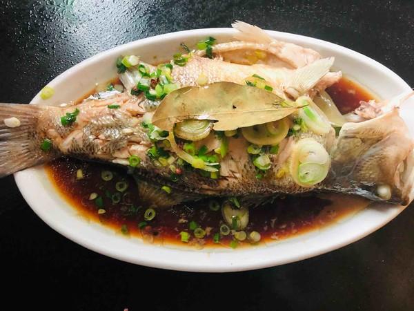 葱油鲈鱼怎么炒