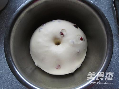 蔓越莓奶酪小面包怎么炖