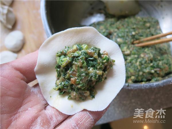 荠菜猪肉鸡油水饺的步骤