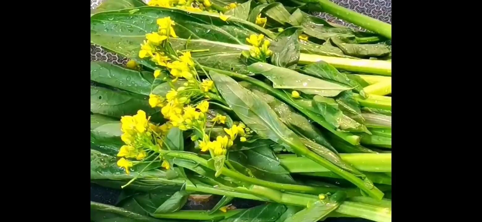 素炒油菜花的家常做法