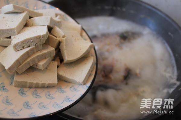 鲫鱼豆腐汤怎样煸