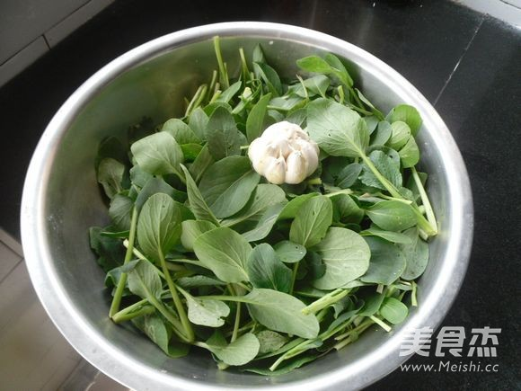 蒜香小油菜的做法大全