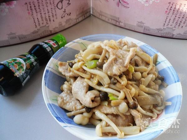 鲜蘑肉片怎样煮