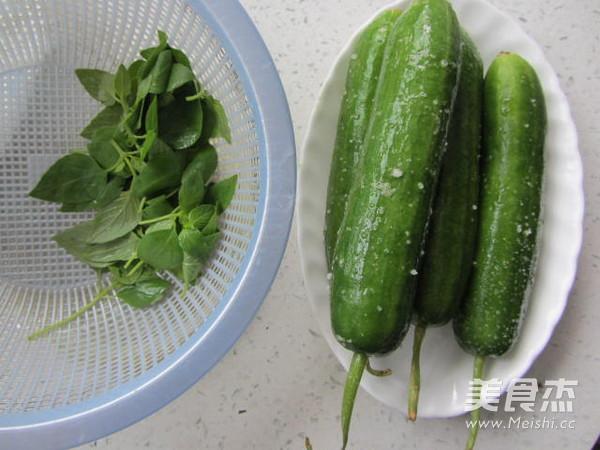 荆芥拌黄瓜的家常做法