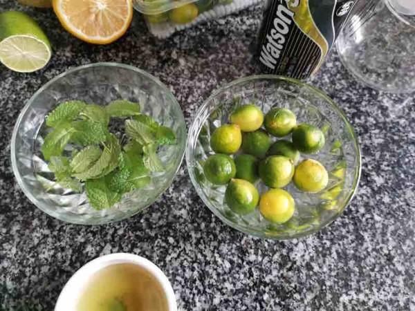 柠檬蜂蜜气泡水的做法图解