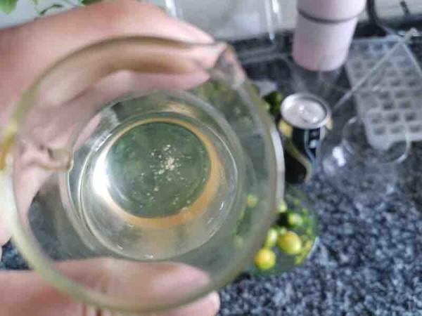 柠檬蜂蜜气泡水的家常做法