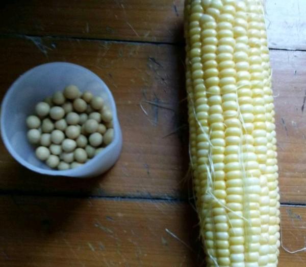 黄豆玉米汁的做法大全